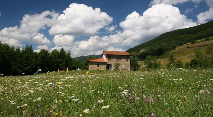 Apartment in farm holidays 4 people - Poppi