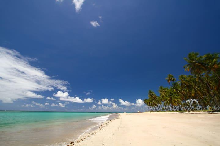 Casa à beira mar no melhor da Praia dos Carneiros