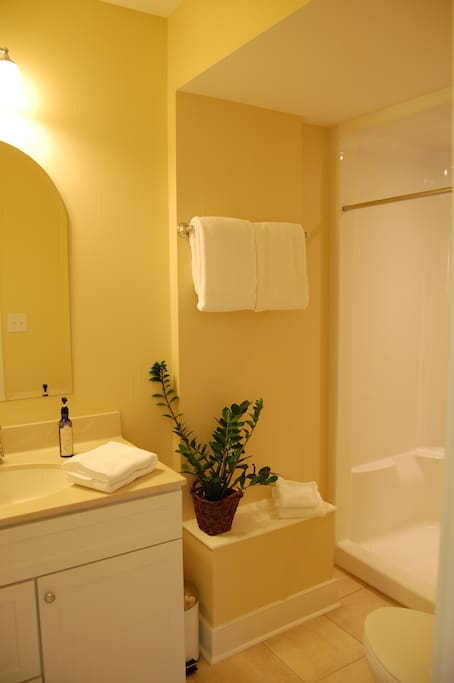 Private bath with large shower