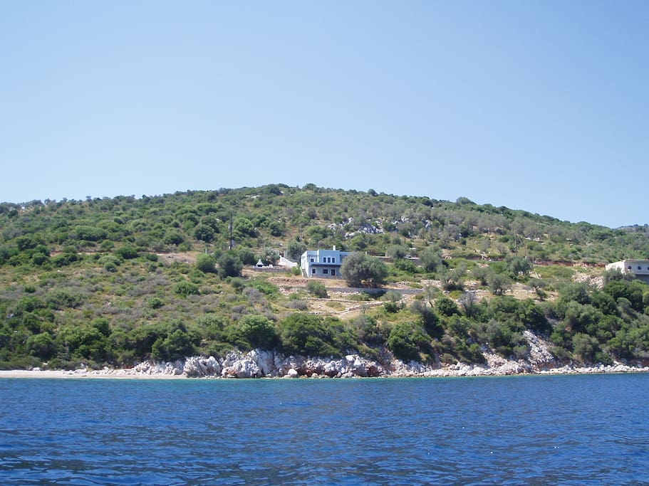 General view of the ol the house and olive grove