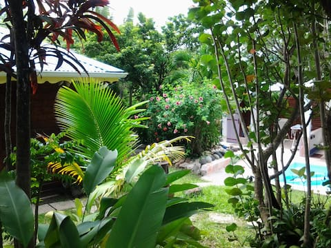 Au coeur d'un jardin tropical