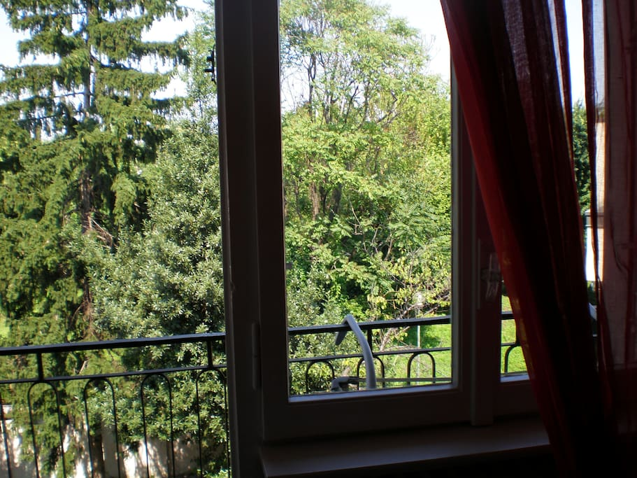 view from orange room