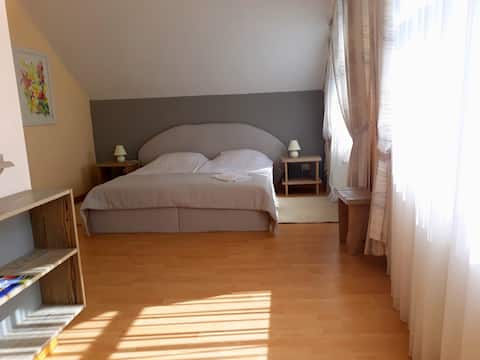 Single room apartment, Brāļtīrumi