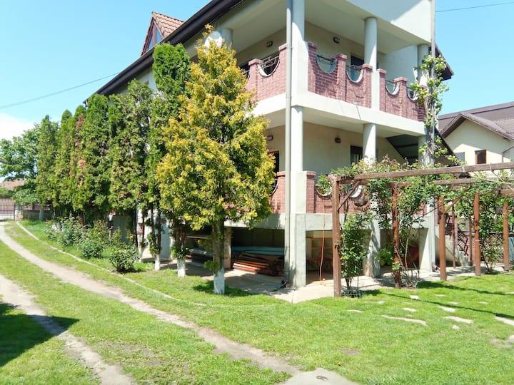 Apahida house