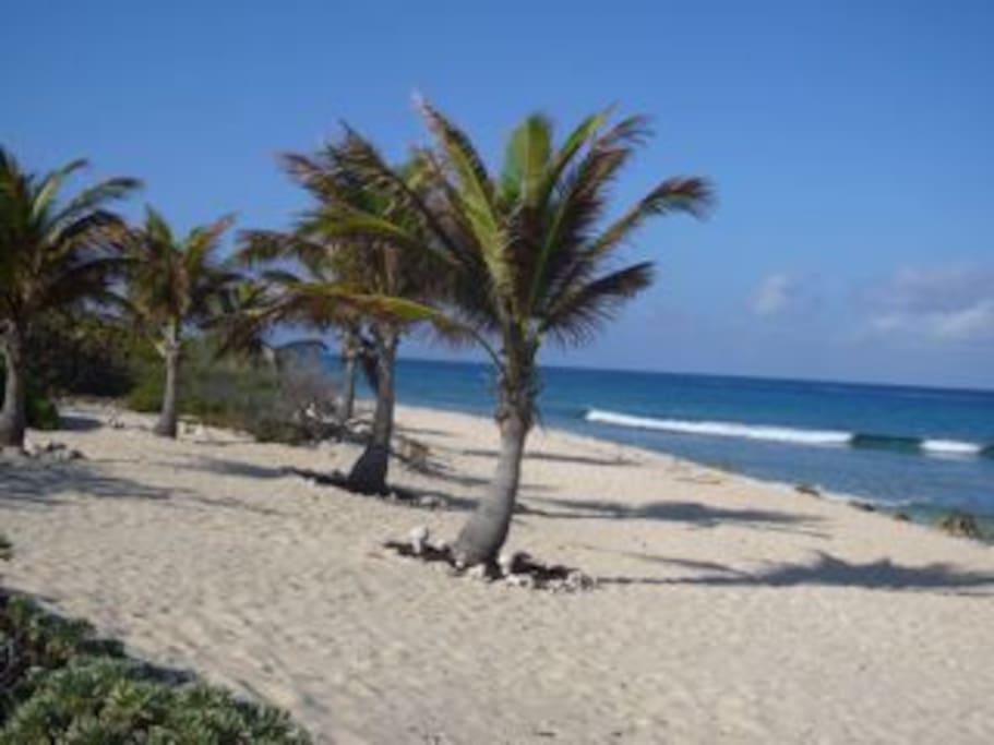 Sonscape Beach