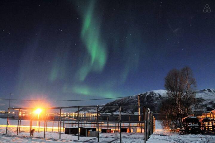 Der beste Ort, um die Nordlichter zu bestaunen