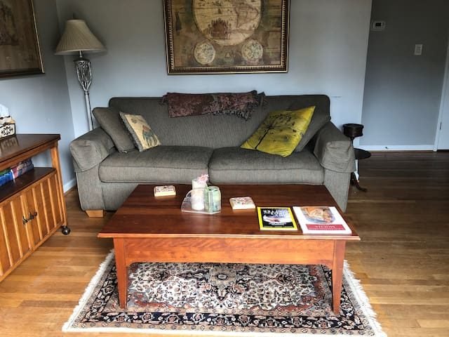 Cozy 1/B condo in the heart of Virginia Highland