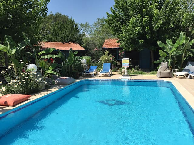 Kaya Garden Apart House Kayaköy with swiming pool - Fethiye - Flat