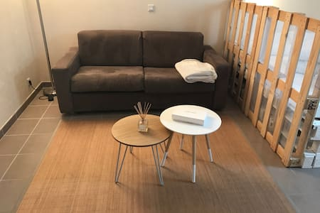 Studio near Geneva - Ambilly - Kondominium