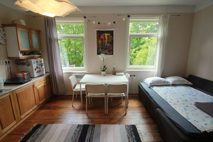 Sunny Central Studio - Tartu - Appartement