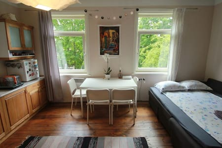 Sunny Central Studio - Tartu - Apartmen