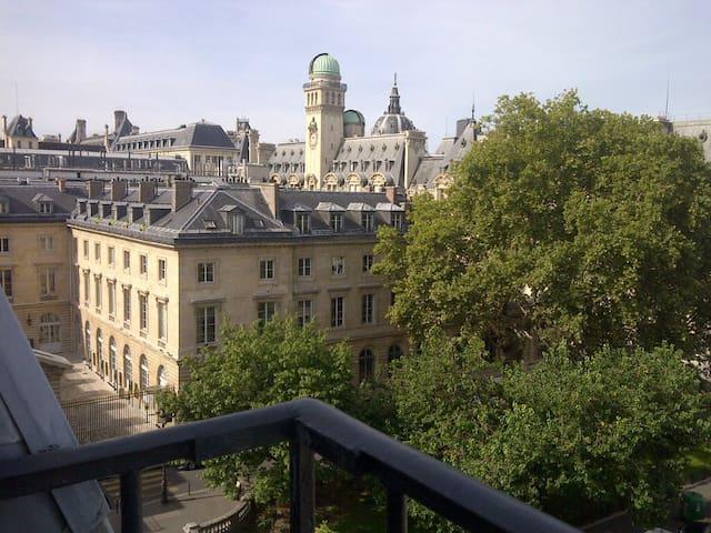 Smart/Large Studio, Sorbonne, Views