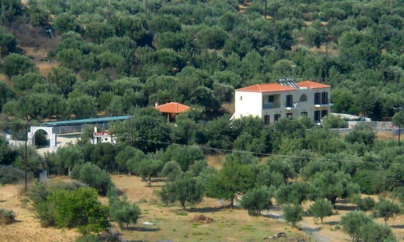 1.  Domaine Papakonstantis Apartments To Let