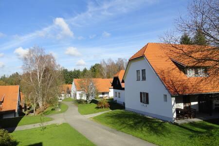 Ferienhaus in Österreich Litschau  - Litschau