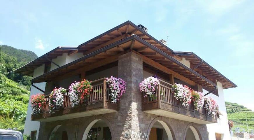 Attico panoramico immerso nei vigneti del Trentino - Palù - Departamento