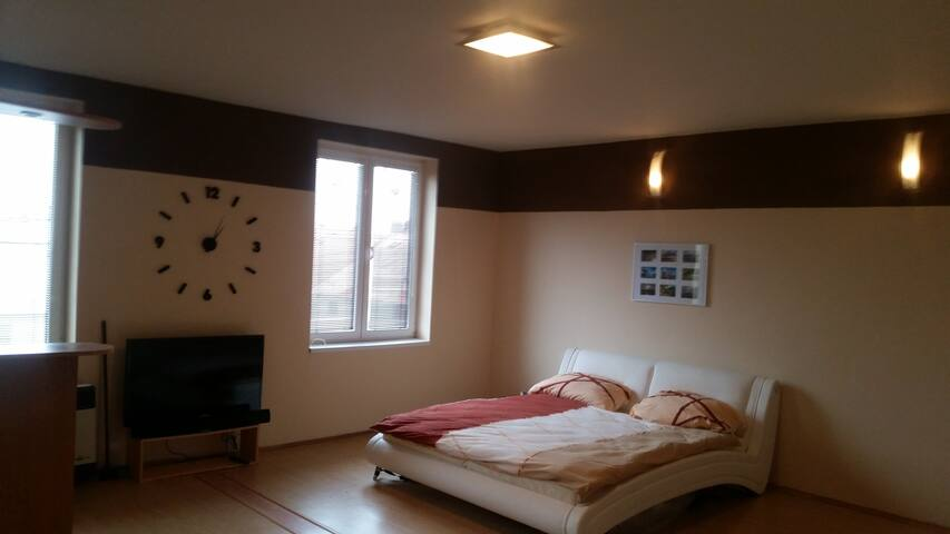 SSS Super Spacious Studio - Plzeň - Appartement