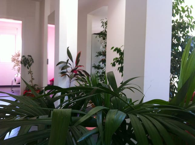 Nature & confort - Talayuela - บ้าน