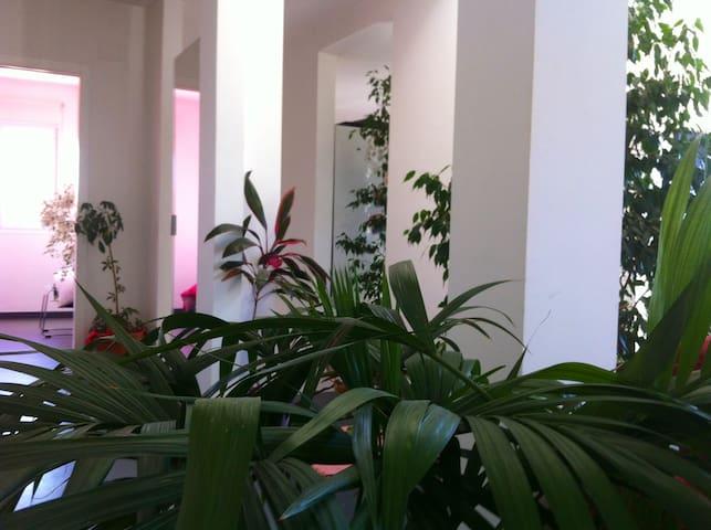 Nature & confort - Talayuela - Huis
