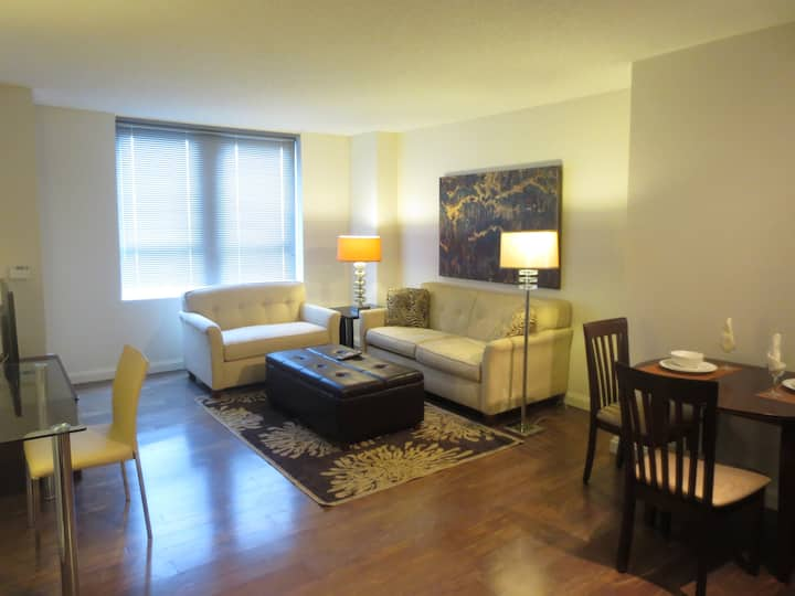 Lux Downtown Boston 1BR Apt w/pool