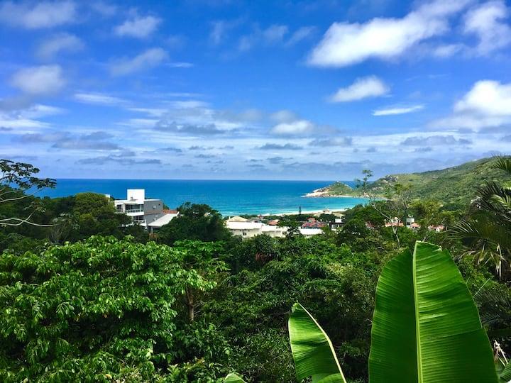 Vista Única Incrível da Praia Mole