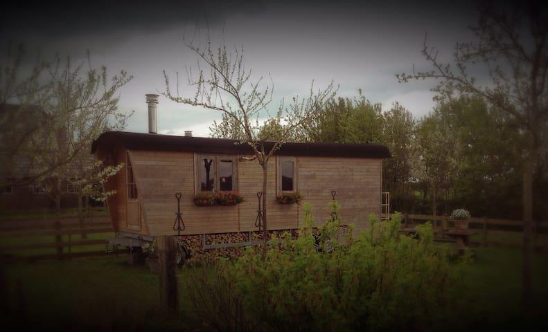 Mooie woonwagen op de Hondsrug - Drouwen - Bed & Breakfast