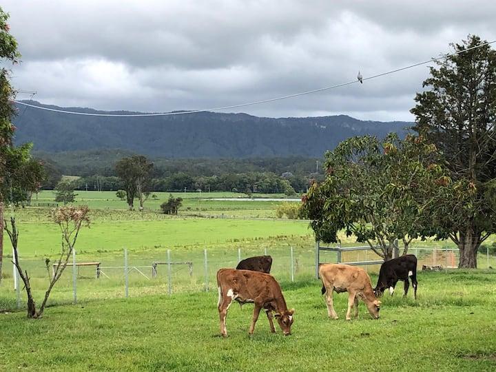 Beckworth Farm Stay - Manning Valley