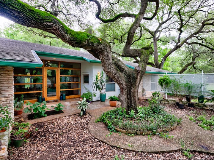4.3 Miles to ACL! Close-in Wooded Modern Comfort