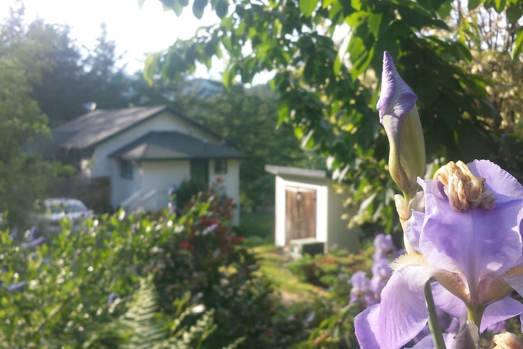 Bed And Breakfast Willamette Valley Oregon