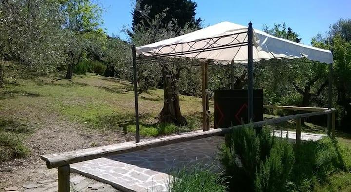 Villa I Viticci