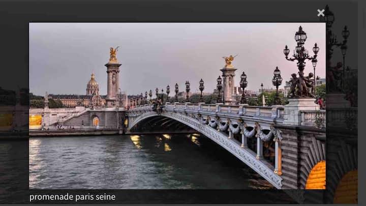 Vintage Paris Est