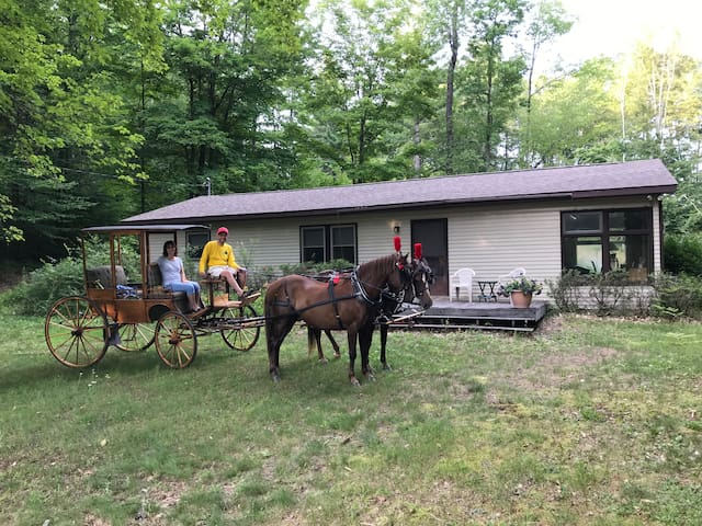 Bring your horse to Northway Inn~Awesome trails!