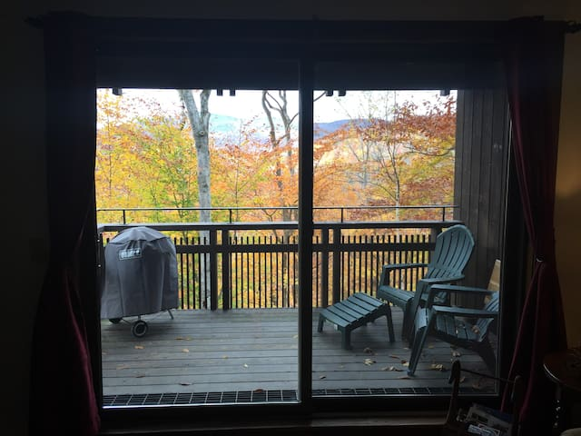 COZY APT. BETWEEN OKEMO /KILLINGTON - Plymouth - Appartement