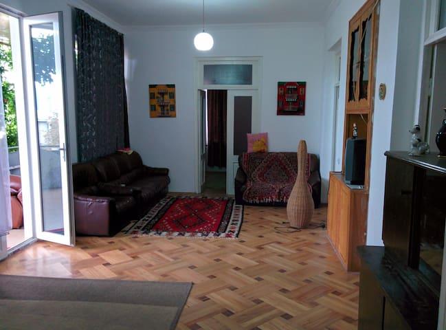 Natali GuestHouse Telavi, Georgia - Telavi - Townhouse