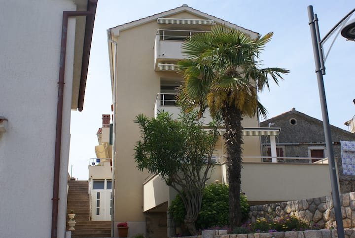 Apartment for 2-3 persons Robert 2