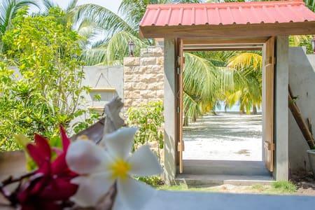 Cerulean View Residence - Maldives - Penzion (B&B)