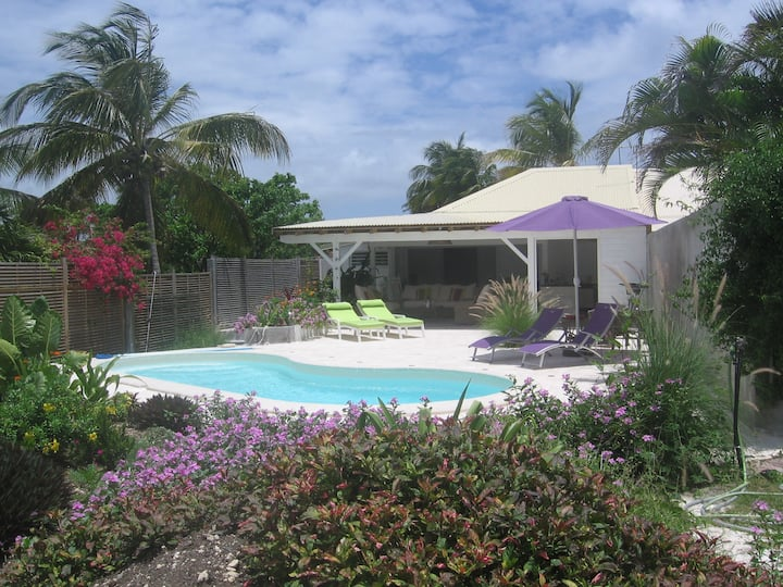 villa in the garden