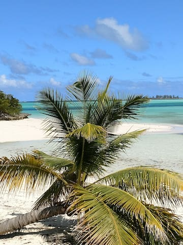Turtle Cay Bungalow Sleeps 8 Bahamas By Tech Travel