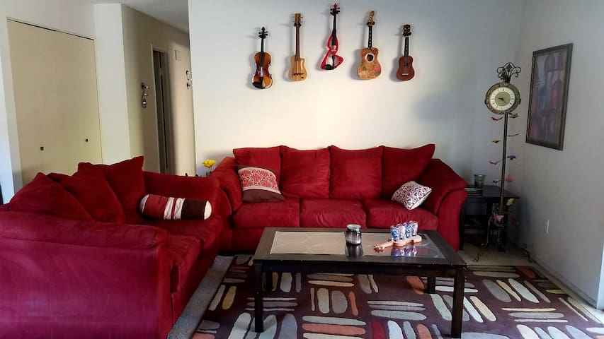 Private room near Beach, Mall, UCSD and Bus Stops!