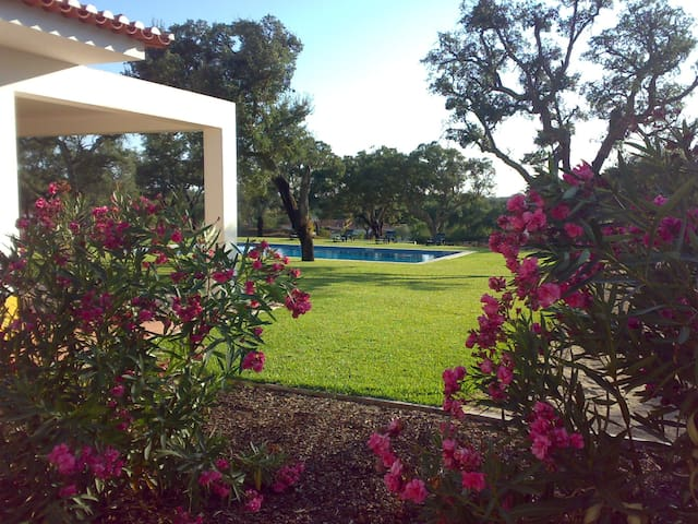 FAMILY COUNTRY VILLA (BIRDWATCHING, GOLF & NATURE) - Santo Estevão - Villa