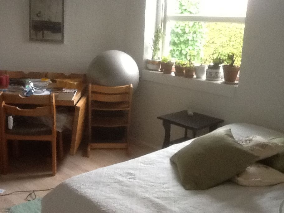 One of the two bedrooms with room for two in a shared bed. If preferred one can have a madrass on the floor.
