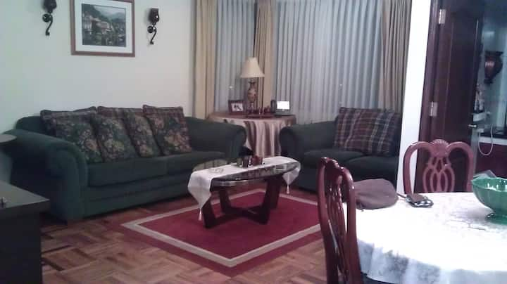 elegant 2 bedroom apt zona sur