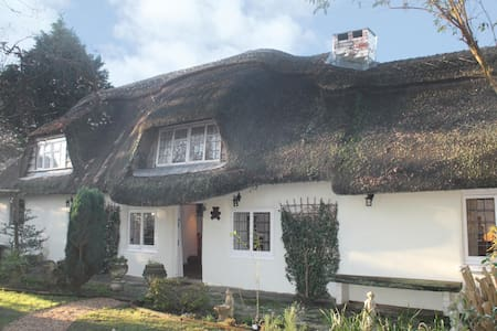 Beautiful 4 Bedroom Thatch Cottage! - Sway