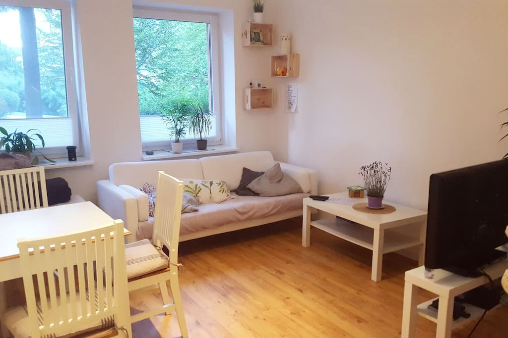 clean cozy flat with garden flats for rent in kassel hessen germany. Black Bedroom Furniture Sets. Home Design Ideas