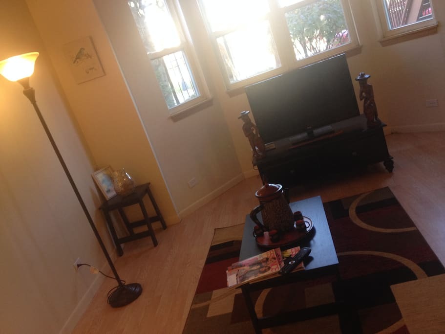 Wonderful Apartment In Bronzeville Houses For Rent In Chicago Illinois United States
