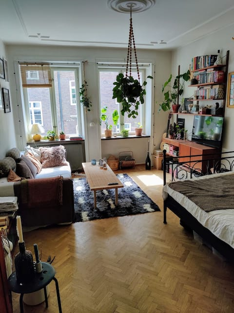Cozy 1-room apartment in the heart of bohemian Malmö