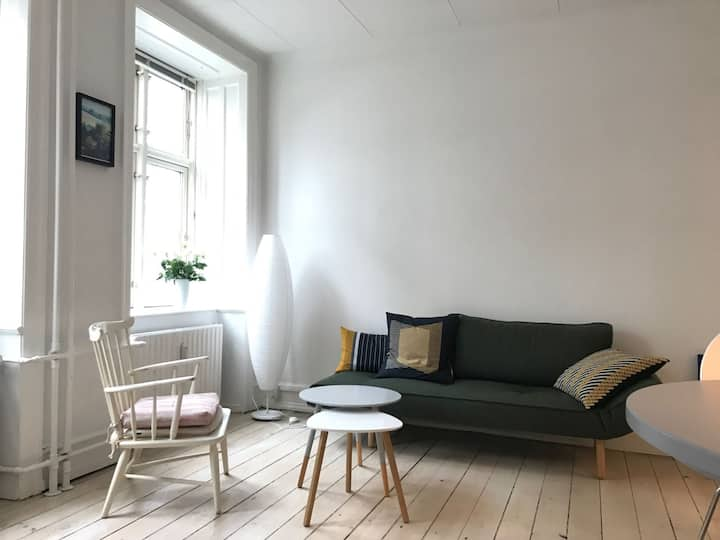 Vesterbro - 2 Bedrooms - Close Tivoli - Brorsonsgade - Space For 3 (1183-1)