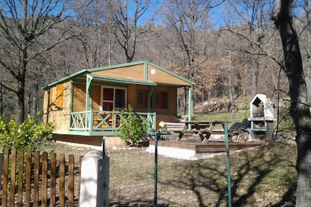 Chalet with pool access - Ghisoni - Chalé