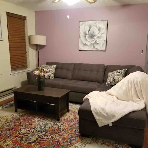 HISTORIC DOWNTOWN Cozy-Modern Apt PETS WELCOME!