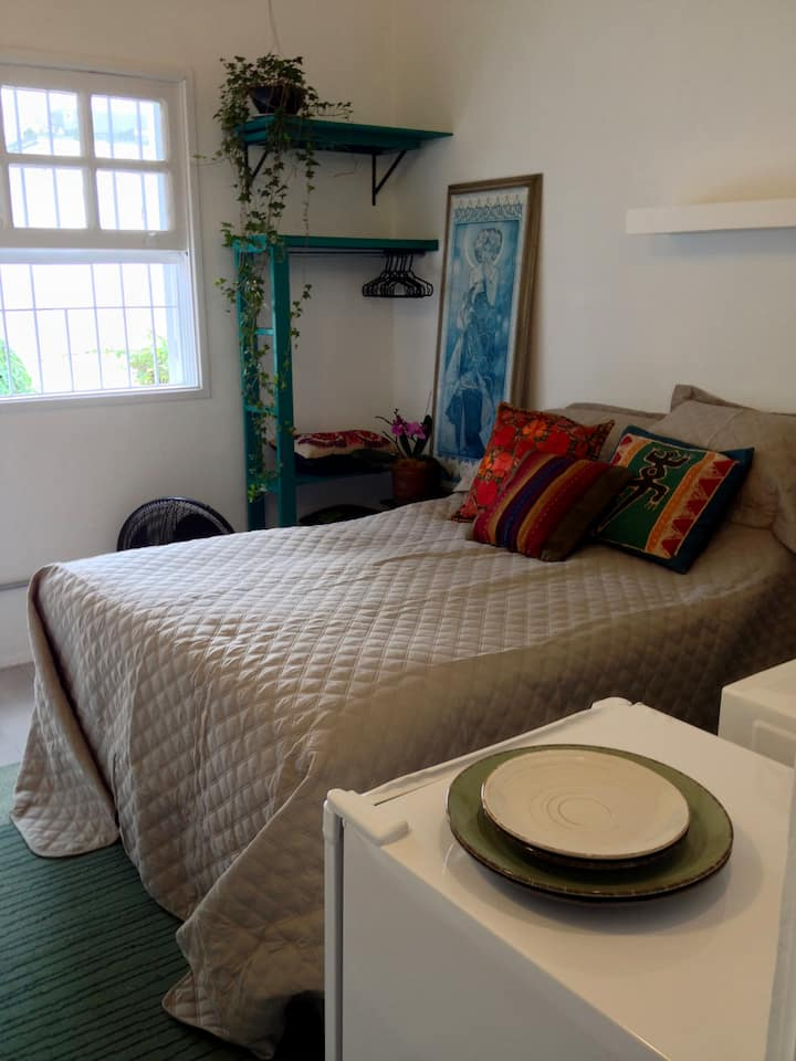 Charming room in safest and green neighborhood!