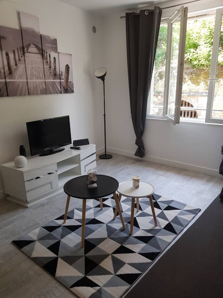 Charmant Appartement au centre d'Amboise